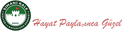 simanider-logo